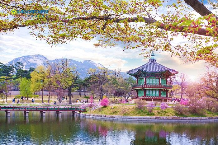 VISA Du lịch Hàn Quốc có thời hạn là bao lâu