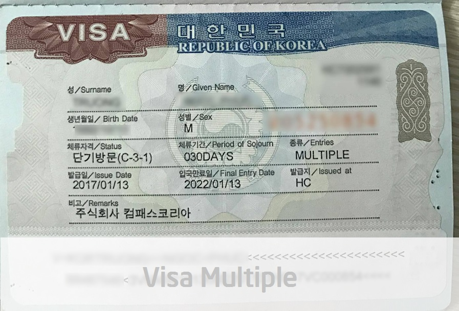 visa multiple